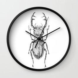 Lucanus cervus Wall Clock