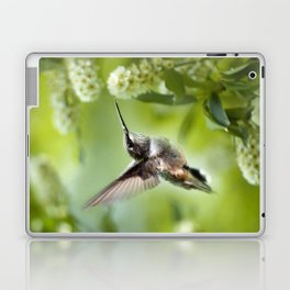 Hummingbird Love Laptop & iPad Skin