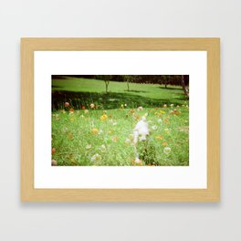 fido and the flowers Framed Art Print