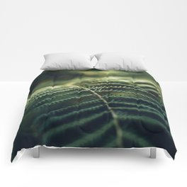 Green and Golden Comforters
