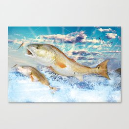 Red Fish Canvas Print