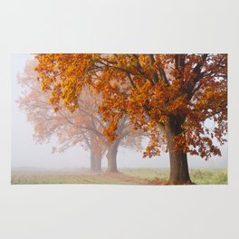 Oaks in the misty Autumn morning (Golden Polish Autumn) Rug