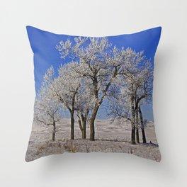 Frosty Trio Throw Pillow