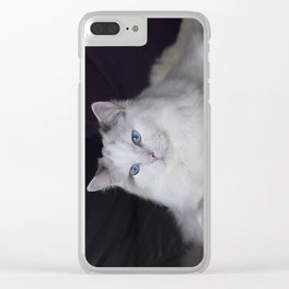 Ragdoll Cat Her Majesty Clear iPhone Case