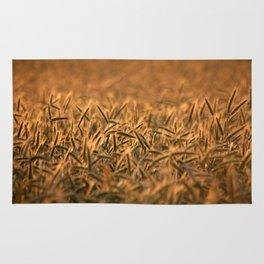 Golden grain | Goldenes Getreide Rug