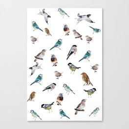 I love birds Canvas Print