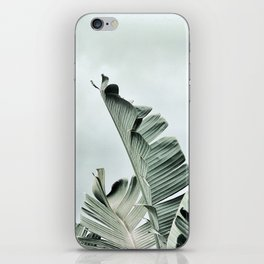 banana leaves iPhone Skin