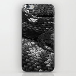 Diamondback Rattlesnake iPhone Skin