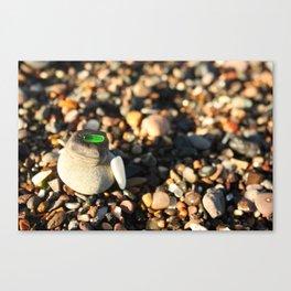 Little Boulders Canvas Print