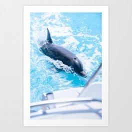 JoJo the Dolphin Art Print