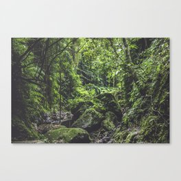 Green Life Canvas Print