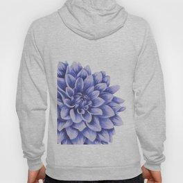 Big flower, purple chrysanthemum Hoody