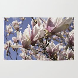 Magnolia Blossoms Shiver Against A Chill Wind Rug