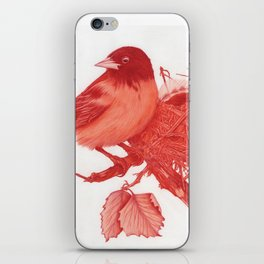 Nested Oriole iPhone Skin