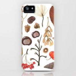 Autumn treasure chest iPhone Case