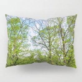 The six trees Pillow Sham