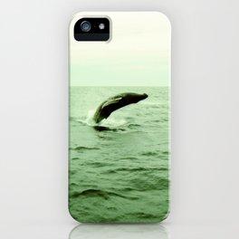 breaching humpback iPhone Case