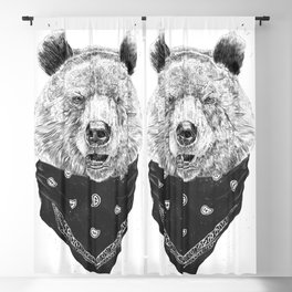 Wild bear Blackout Curtain