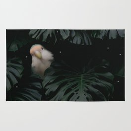 Little Lovebird Hiding Rug