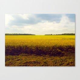 Prairie Landscape Bright Yellow Wheat Field Canvas Print