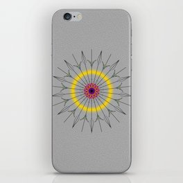Round disc iPhone Skin