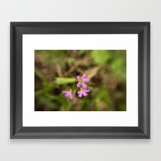 Filthy Flora - Fine Art Flower Photo Framed Art Print