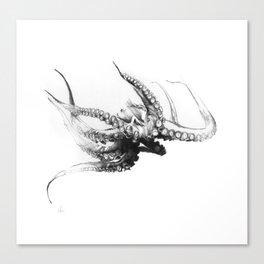Octopus Rubescens Canvas Print