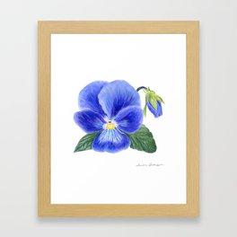 Purple Pansy by Teresa Thompson Framed Art Print