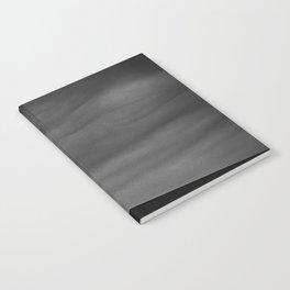 Texas Capitol Notebook