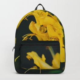 Beautiful yellow flower on black background - Botanical Photography #Society6 Backpack