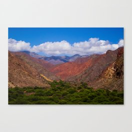 Valley of trees Canvas Print