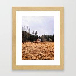 Nostalgic Visions Framed Art Print