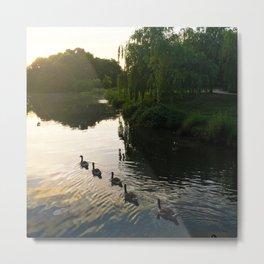 Morning Geese Metal Print