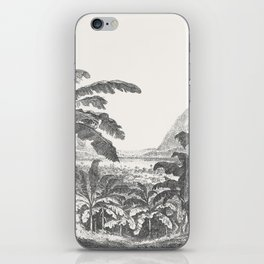 Palms and Mountain iPhone Skin