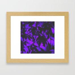 Midnight Japanese Maples Framed Art Print