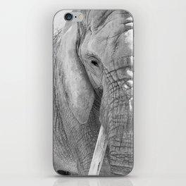 Elephant Photography | Wildlife Art | African | Nature | Animal Photography | Black and White iPhone Skin