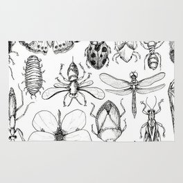 Insect Study Rug