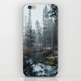 Canmore iPhone Skin
