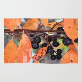 Choke Berries in Autumn Rug