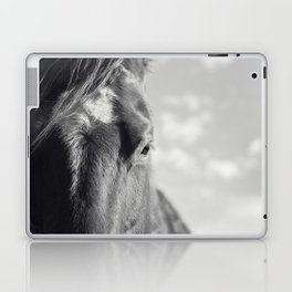 Close Up Horse Picture in Black and White Laptop & iPad Skin