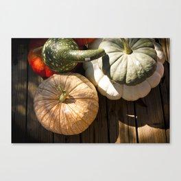 Pumpkins + Gords Canvas Print