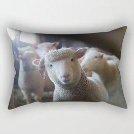 Sheep Looking at Camera Rectangular Pillow