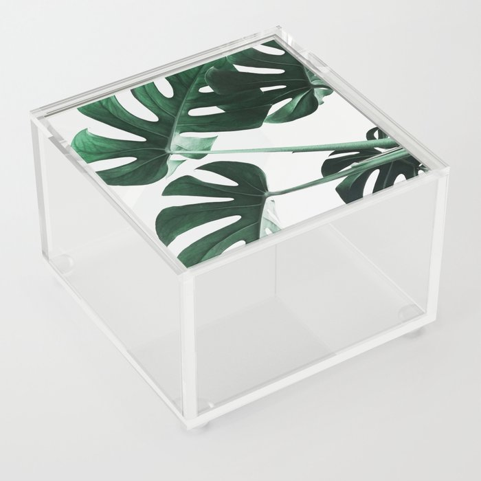 Monstera, Leaves, Plant, Green, Scandinavian, Minimal, Modern, Wall art Acrylic Box
