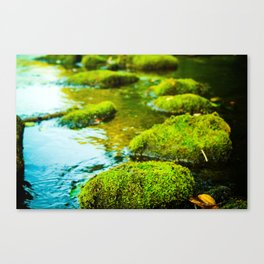 Stepping Stones Canvas Print