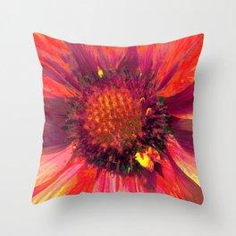 Extreme Indian Blanket Throw Pillow