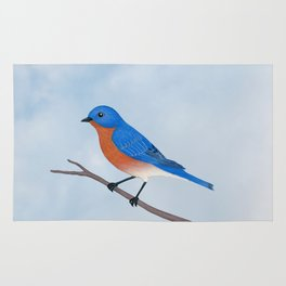 male eastern bluebird portrait Rug