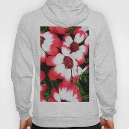 Pink Flower Power Hoody
