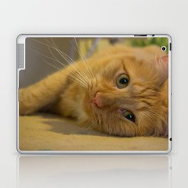 Fuzzy Comfort Laptop & iPad Skin