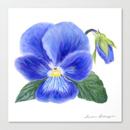 Purple Pansy by Teresa Thompson Canvas Print