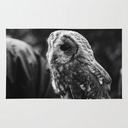 Lovely Owl. Rug